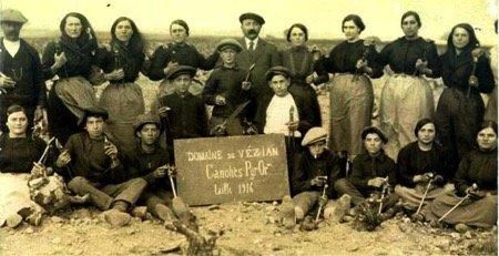 Domaine de Vézian 1916